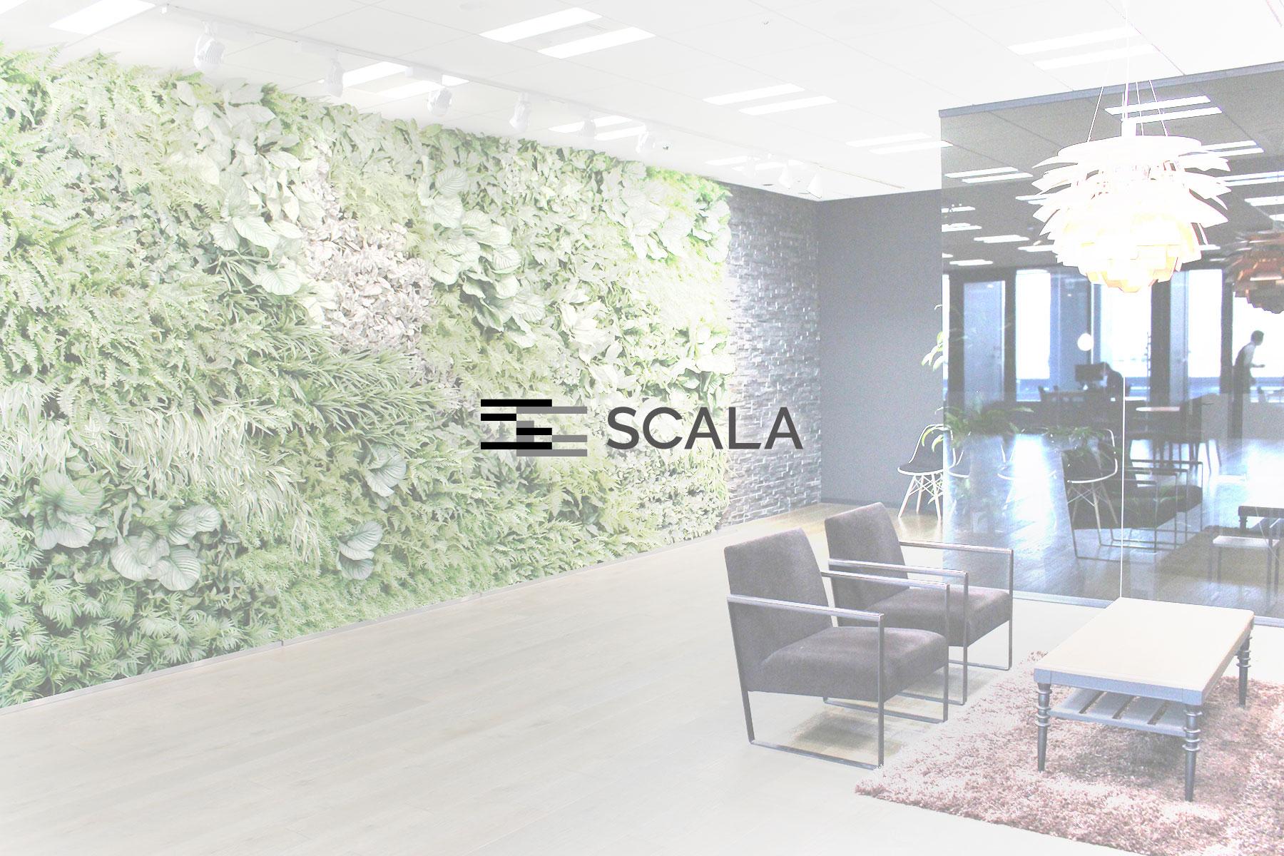 株式会社スカラのトップ画像